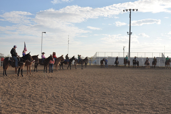 Equine Events